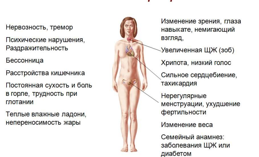 Тиреоглобулин что это такое норма и что значит если